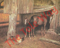 Horses and Rooster (8x10)