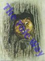 Owl in a Tree (5x7)