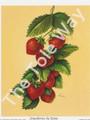 Strawberries by Reina 175 (4x5)