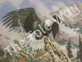 Eagle Dawn (8x10)