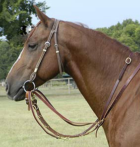 German Martingale with Barrel Reins
