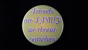 "Friends Are Family We Choose Ourselves | 3 1/2"" Magnet"