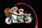 Tandem Bicycle - NEW 2015