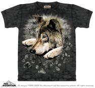 Wolf in Dye Paw M151056
