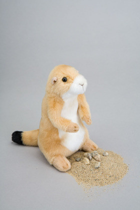 Digger Prairie Dog Gifts And Blessings