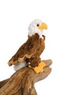 Colbertt Eagle