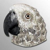 African Gray Magnet