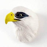 Bald Eagle Feathered Magnet