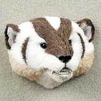 Badger Fur Magnet