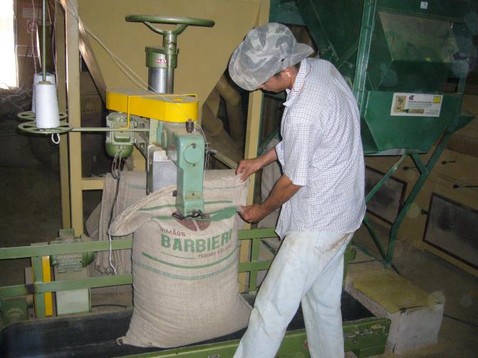 The farmers in Brazil package the raw coffee beans in burlap sacks.