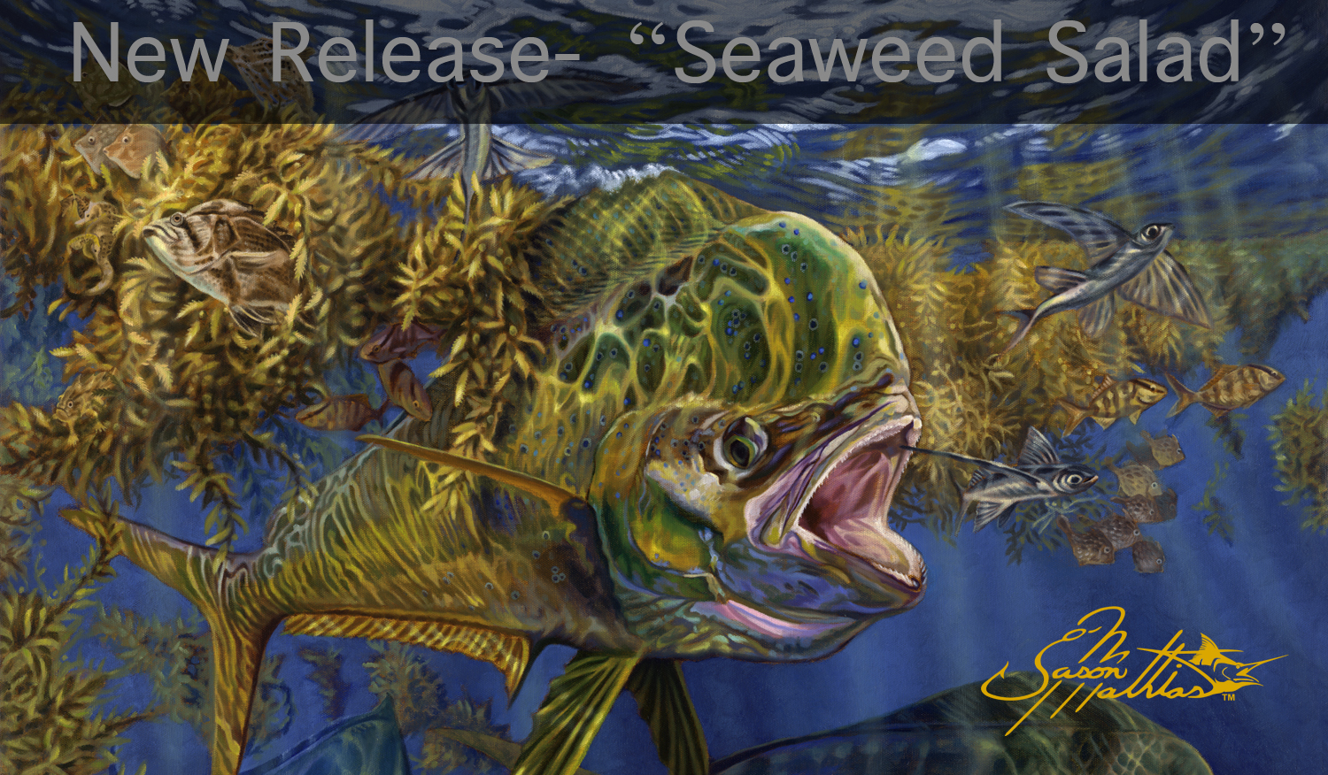 mahi, dorado, dolphin fish, gamefish art, sportfish art, weedline, underwater, prints, painting, art, jason mathias