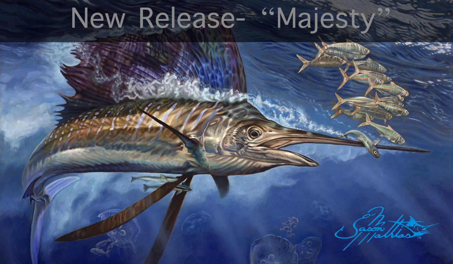 underwater, Sailfish, art, painting, prints, gamefish art, sportfish art, jason mathias, majesty, pelagic, billfish, baitball