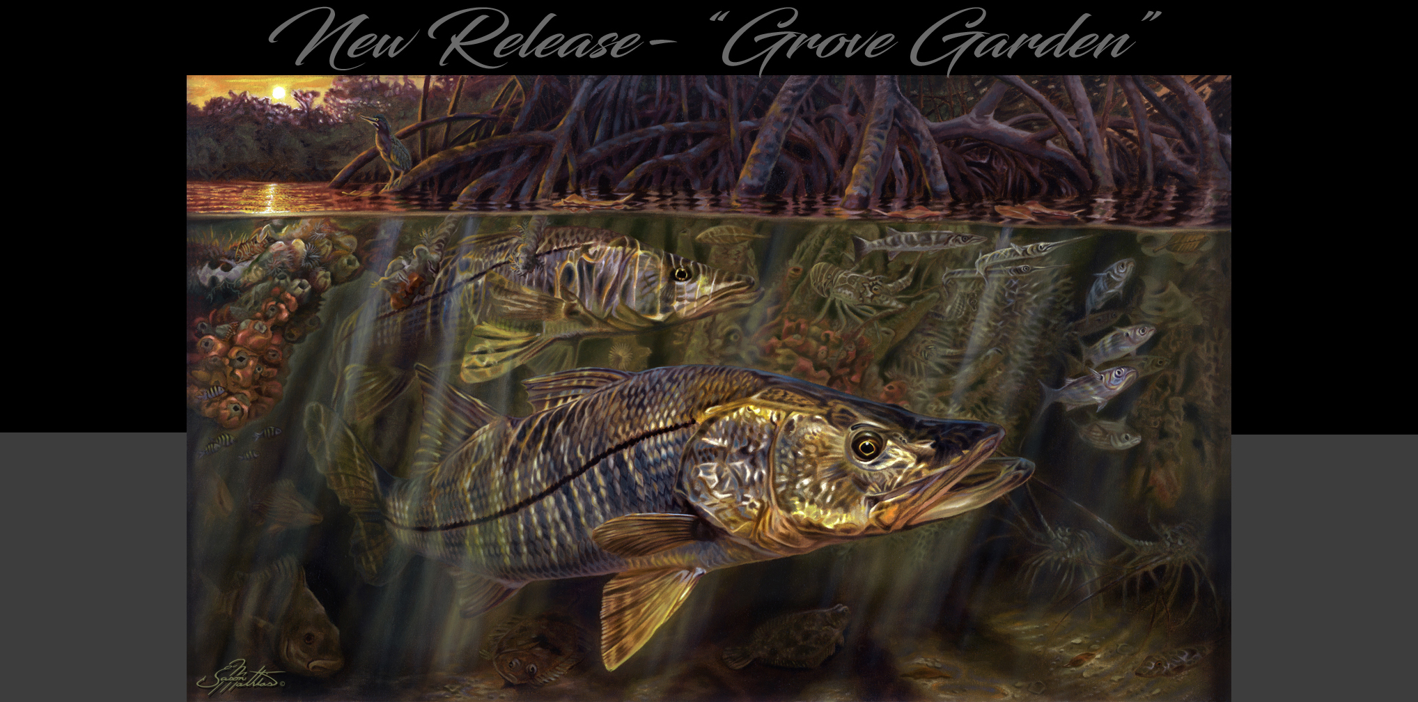 Snook, painting, art, underwater, mangroves, sunset, sunrise, jason, mathias, grove, garden, sportfish, gamefish, fishart, marine, art, master, best, classical, wildlife, habitiat, estuary, intercoastal, inshore, ecosystem