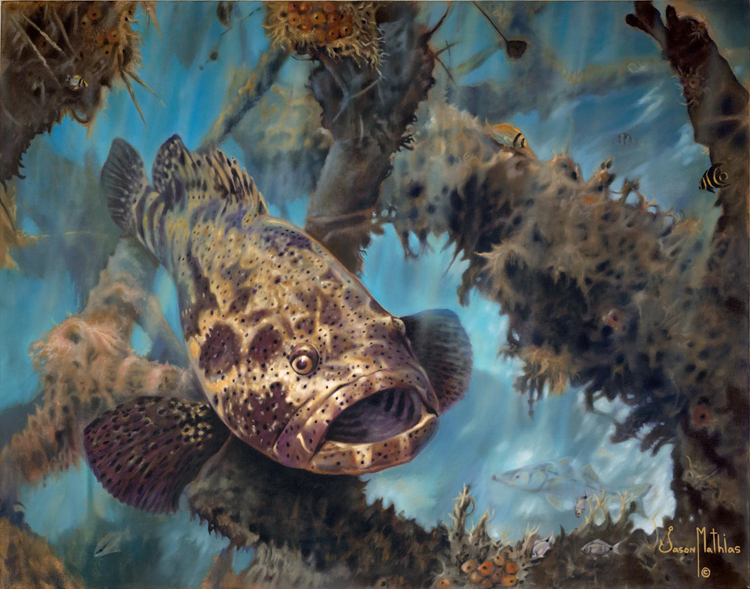 goliath-grouper-art-jason-mathias-game-fish-art-sport-fish-art-underwater-art.jpg