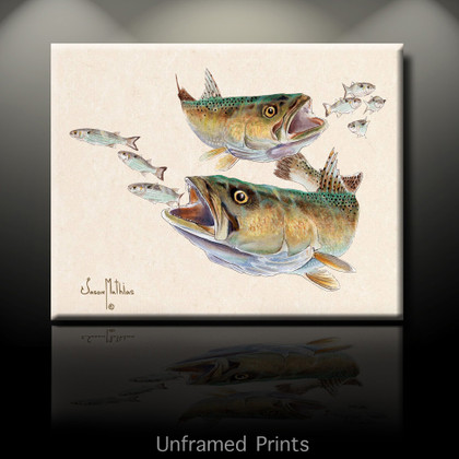 """""""Unframed prints"""" Speckled Trout"""" by artist Jason Mathias masterfully portrays two Gator Speckled SeaTrout ambushing a school of finger mullet."""