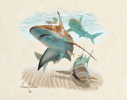 In this vision, skilled artist Jason Mathias masterfully portrays a hulky Sandbar Shark patroling the coastal sandy shoreline for a meal.