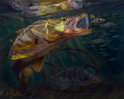 In this vision, renowned artist Jason Mathias portrays a lit up Snook ambushing a school of bait fish in the mangroves. Fine art oil painting and prints.