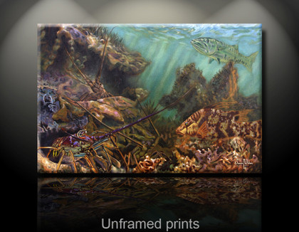 """Unframed Prints"" by artist Jason Mathias masterfully portrays three brilliant Spiny Lobster blending into the warm, shallow grassy ledges with a camouflaged hogfish and curious barracuda."