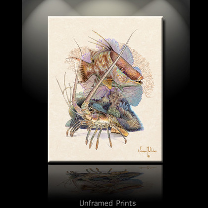 """""""Unframed prints"""" by artist Jason Mathias masterfully portrays a brilliant Hogfish using its color-changing patterns to blend into the reef while a Spiny Lobster defends his territory."""