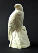 Study Cast - Pergrine Falcon