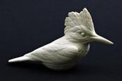 Study Cast - Kingfisher