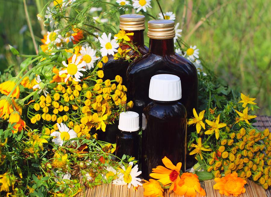 medical-herbs.jpg