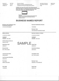 Business Name Report--Certified