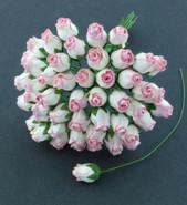 WOC - Hip Rosebuds (50) - Bumper Pack - 2-Tone Pink