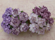 "WOC - Cottage Roses - 25mm (1"") - Mixed Purple/Lilac Tone - (20)"