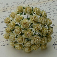 "WOC - Open Roses - 25mm (1"") - Cream  (50)"