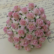 """WOC - Open Roses - 10mm (3/8"""") - 2-Tone Baby Pink/Ivory - 10 pack"""