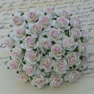 "WOC - Open Roses - 10mm (3/8"") - 2-Tone White with Baby Pink Center (10 pack)"