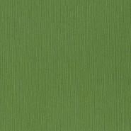 Bazzill Basics - 12x12 Cardstock - Fourz - Guacamole