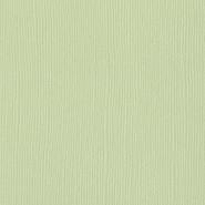 Bazzill Basics - 12x12 Cardstock - Mono - Aloe Vera