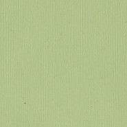 Bazzill Basics - 12x12 Cardstock - Fourz - Spring Breeze