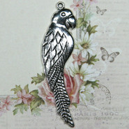 Charm - Parrot - Metal - Silver Tone