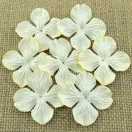 "WOC - Hydrangea Blooms - 25mm (1"") - Deep Ivory - 10 pack"
