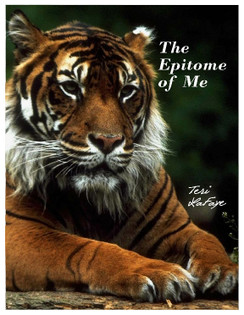 Front cover/The Epitome of Me by Teri LaFaye