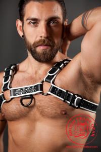 Bulldog Latigo Leather Harness - Rough Trade Gear