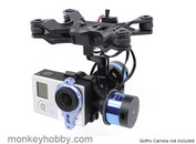 Tarot 2 Axis Brushless Gimbal For Gopro TL68A00