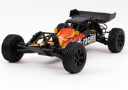 BSD 1/10 2WD Brushed Baja BS709T