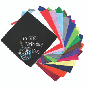 I'm the Birthday Boy - Bandanna