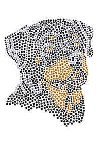 Rottweiler - Women's T-shirt