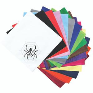 Spider Web & Spider Bandanna