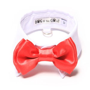 Red Bow Tie with white shirt collar.