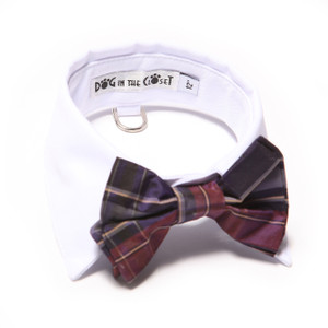 White shirt collar with purple plaid silk bow tie.