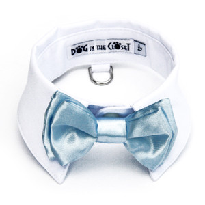 Baby blue bow tie with white shirt collar.