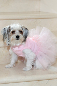 Small Rhinestone Design Added to Front of Dog Tutu