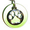 Silver plated chain collar with silver plated charms. Silver plated paw on lime acrylic disk.