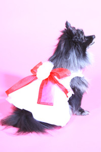The Madeleine Harness Dog Dress with Red Sash